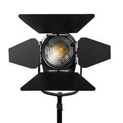 "Ikan WS-F100 White Star 4"" Fresnel 100 Watt Light"