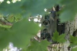 Sturdy Acorntrail Hunting Trail Surveillance Video Camera